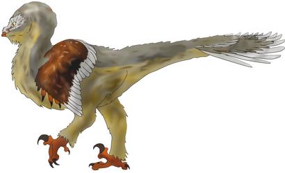 Tytoraptor clamorlarua Colored by Zemeraire