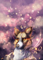 Starry eyed by LiaBorderCollie