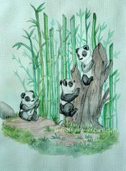 Pandas by tardelia