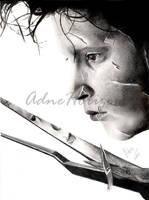Scissorhands by AdneCarvalho