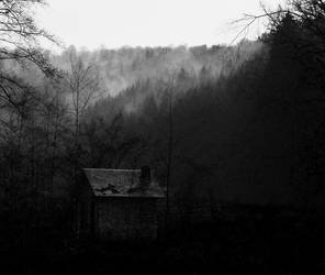 in silence I dwell by Jabawock