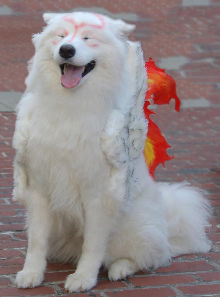 Amaterasu - Looking Pleased by volko-dav