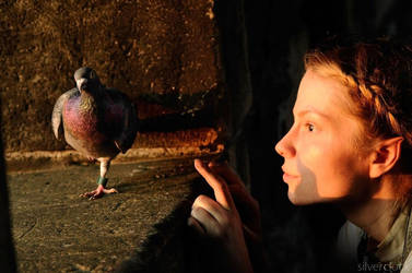 alinoe and pigeon by Serreth