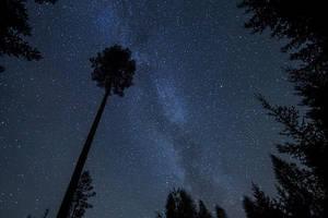 Reach For The Stars by Laazeri
