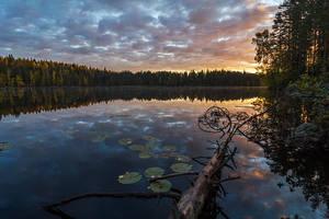 Calm Morning by Laazeri