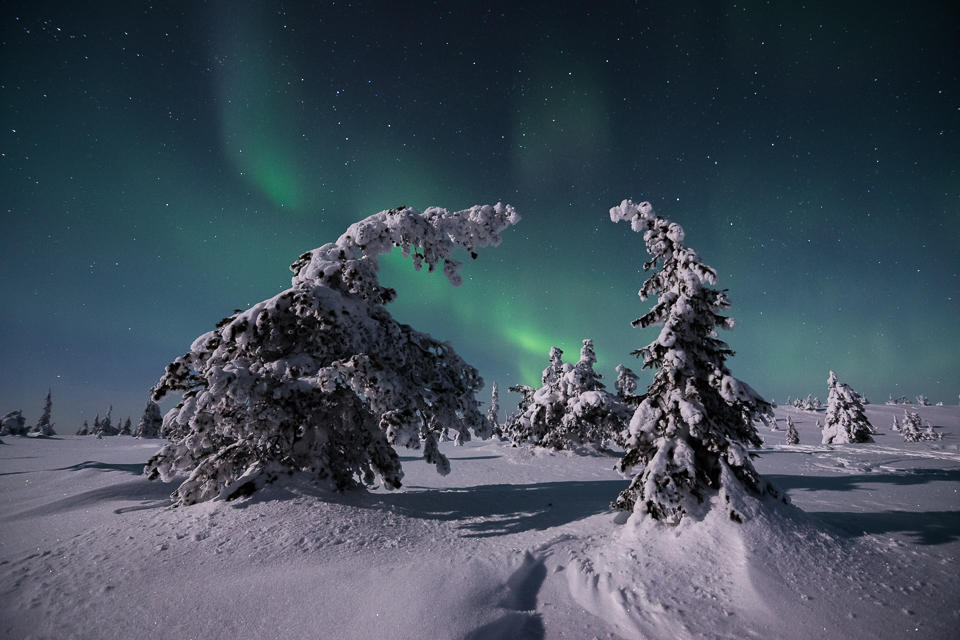 Auroras and Moonlight by Laazeri