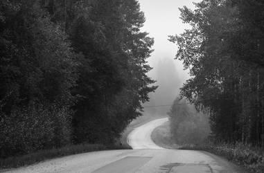 Misty Road by Laazeri