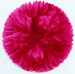 Flower for my Valentine 7 by HopeHubris28