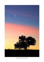 Lunar Dawn by yenom