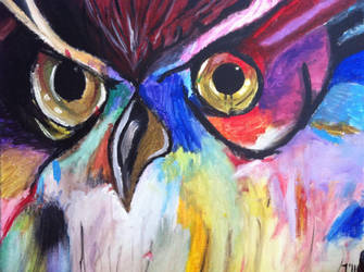 Colorful Owl by taysteezyy