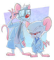 Pinky and The Brain by DoctorPed