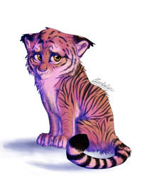 Tiger Cub by Clambiluna