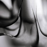 Sculptural by Loucos