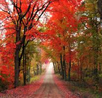 Love in Autumn Air by Bella-Kunst