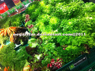 Green blinds by negaistar