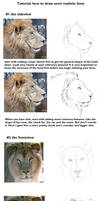 Semi realistic lion head tut by DRGNFL