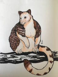 Inktober day 16 - golden mantled tree kangaroo  by DRGNFL