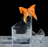 The butterfly effect by DanielCaro