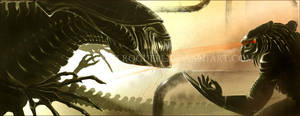 Predator vs Alien Queen by RoguePL