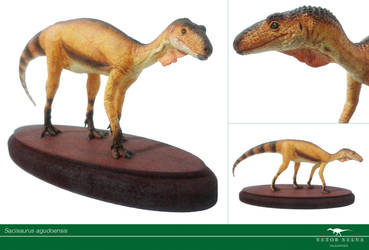 Paleo Brasil - Sacisaurus by Vitor-Silva