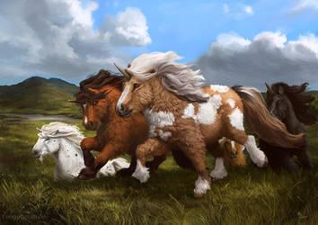 Shetland Unicorns by engelszorn