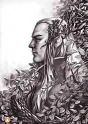 Unseen Scars by engelszorn