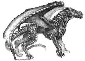 Dragon concept by engelszorn