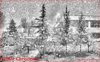 White Christmas by skizo