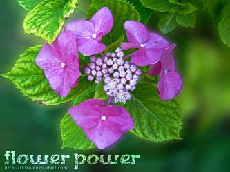 Flower Power by skizo