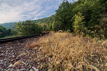 RR Track in Lehigh Valley Gorge by crestmultimeadia