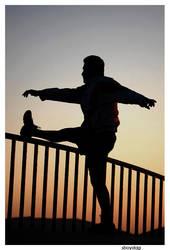 Flexibility by sboydag