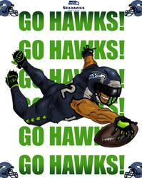 Seahawks fan art by Narcisticthinker