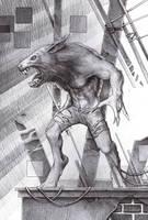 Who Let the Dogs out? by DanielGrzeszkiewicz