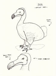 Dodo by jaimeiniesta
