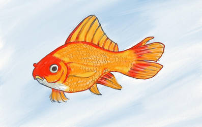 Goldfish, colored by jaimeiniesta