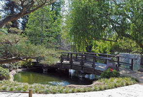 Lormet-Oriental-Garden-0674-01sml2 by Lormet-Images