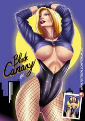Black Canary. by CrazyDraftsman