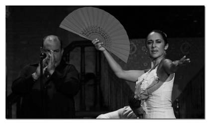 Midnight Flamenco I by stotland
