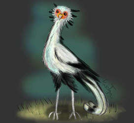 Terus the Secretary Bird by Friendlyfoxpal