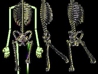 Body S14 by Graindolium