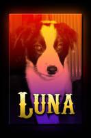 Luna is here by suicidecrew