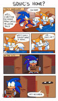 Sonic's home by Domestic-hedgehog
