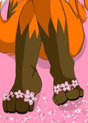 Foxy Footpaws by 22sx