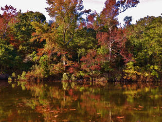 Early Autumn Reflections At Deep Pond 2016 by Matthew-Beziat