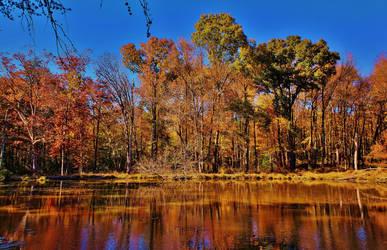 Rieve's Pond Autumn 2018 by Matthew-Beziat