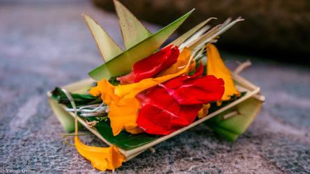 Canang Sari by samshadows