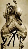 In utero 1 by Technochrist