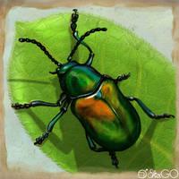 The bug by GALEKA-EKAGO