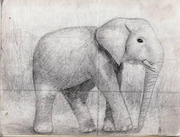 Elephant by Punnie