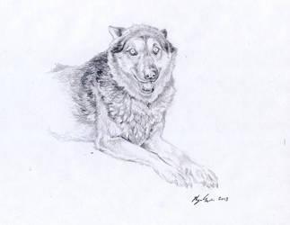 Biggie by Wolfsjal